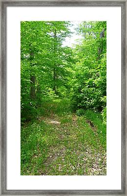 Off The Beaten Path Framed Print by Michael Carrothers