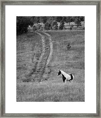 Off The Path Framed Print