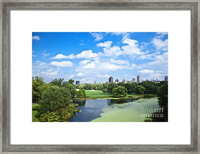 Office Buildings From A Park Framed Print by Inti St. Clair
