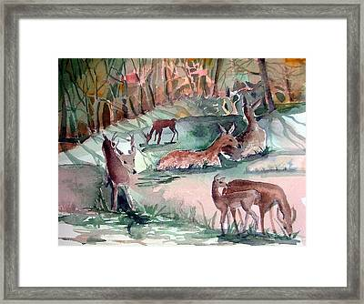 Oh Dear My Deer Framed Print by Mindy Newman