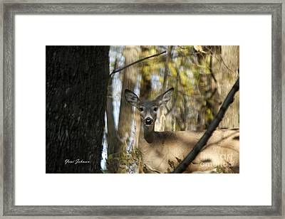Oh Deer Framed Print by Yumi Johnson