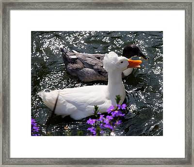 Oh Happy Day Framed Print by Karen Wiles