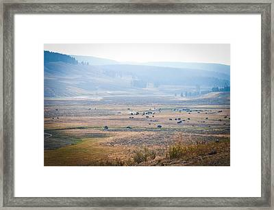Oh Home On The Range Framed Print by Cheryl Baxter