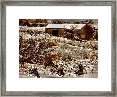 Ohhhh Its Cold Framed Print by Lynne and Don Wright
