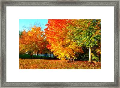 Framed Print featuring the photograph Ohio Autumn Maples by Dennis Lundell