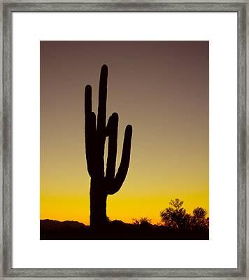 Okay Sunrise Framed Print by James BO  Insogna