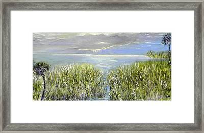 Okeechobee Framed Print by Christy Usilton
