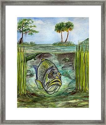 Okeechobee Underwater Framed Print by Heather Torres