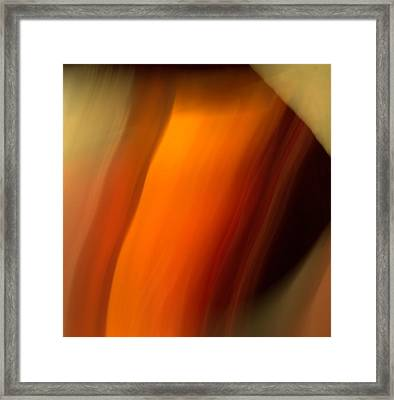 Framed Print featuring the mixed media O'keefe I by Terence Morrissey