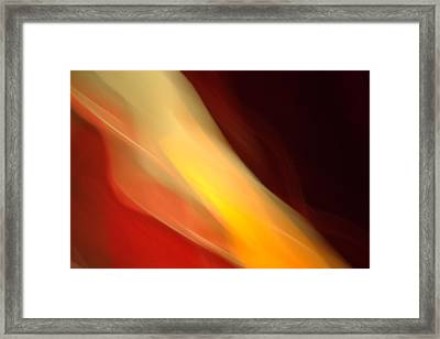 Framed Print featuring the mixed media O'keefe Iv by Terence Morrissey