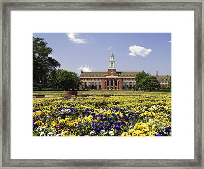 Oklahoma State Flowers Bloom  Framed Print by Oklahoma State University