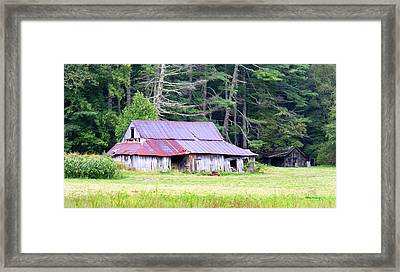 Old Barn Near Cashiers Nc Framed Print