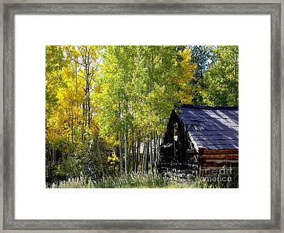 Old Cabin In The Golden Aspens Framed Print by Donna Parlow