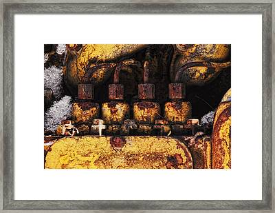 Old Cat In The Woods Framed Print by Susan Capuano