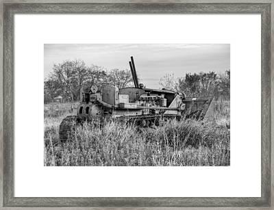 Old Cat Iv Framed Print by Ricky Barnard