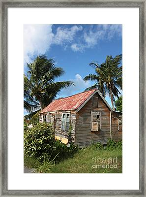 Old Chattel House Framed Print by Barbara Marcus