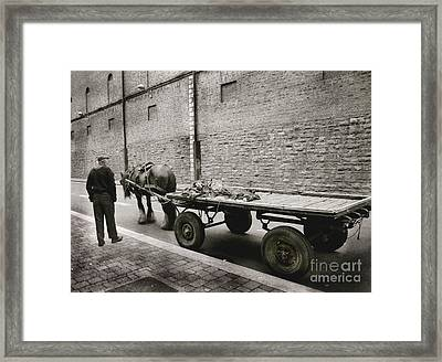 Old Clydesdale Dublin Framed Print by Louise Fahy