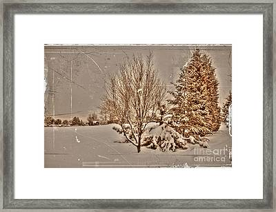 Old Country Christmas Framed Print by Dan Stone