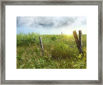 Old Country Fence On The Prairies Framed Print by Sandra Cunningham