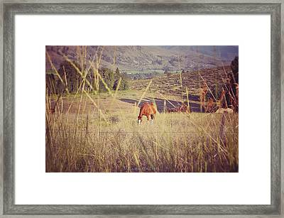 Old Country Road Framed Print by Sarai Rachel