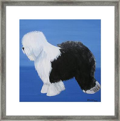 Old English Sheepdog Framed Print