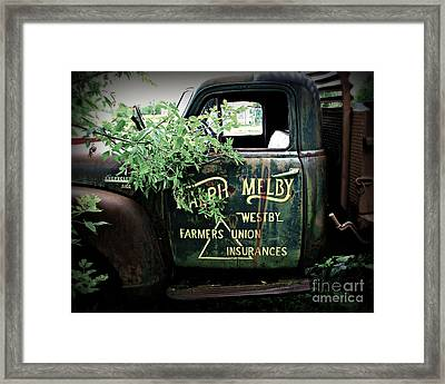 Old Farmers Union Truck Framed Print by Perry Webster
