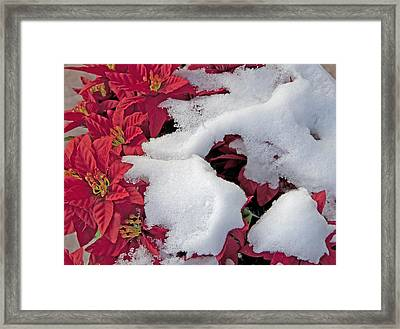 Old-fashioned Christmas 7 - Gardener Village Framed Print by Steve Ohlsen