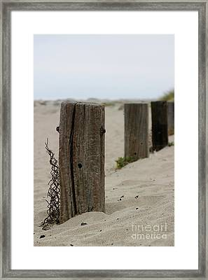 Old Fence Poles Framed Print
