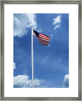 Old Glory Framed Print by Anna Villarreal Garbis