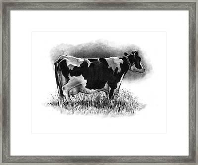 Old Holstein Cow Framed Print by Joyce Geleynse