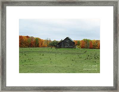 Old Homestead Framed Print by David Murray