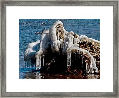 Old Man Winter Framed Print by Mitch Shindelbower