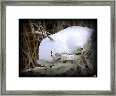 Old Man Winter's Hand Framed Print by Michelle Frizzell-Thompson