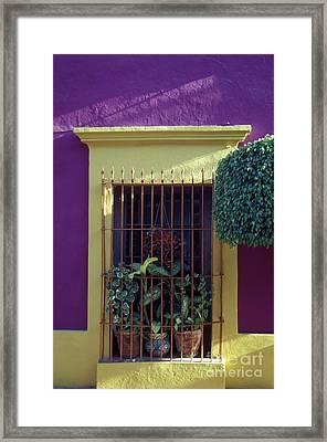 Framed Print featuring the photograph Old Mazatlan Window by John  Mitchell