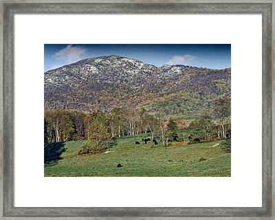 Old Rag Mountain - Shenandoah National Park - Virginia Framed Print