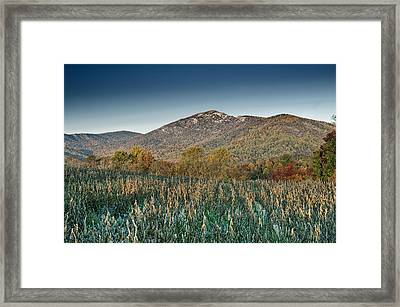 Old Rag Mountain Autumn Scene - Virginia Framed Print