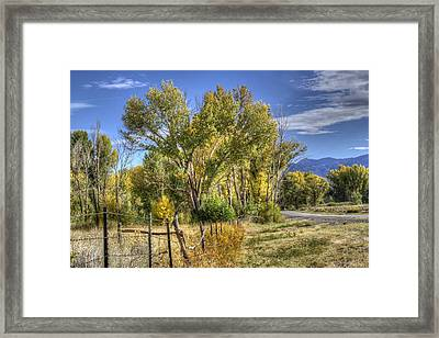 Framed Print featuring the photograph Old Ranch Near Bishop by Michele Cornelius