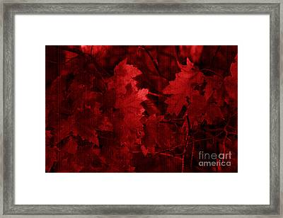 Old Red Framed Print by Marjorie Imbeau