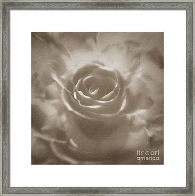 Framed Print featuring the digital art Old Rose by Johnny Hildingsson