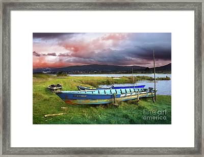 Old Row Boats Framed Print by Carlos Caetano