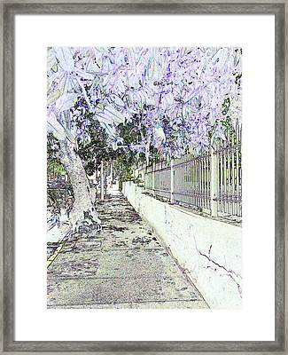 Old San Juan 14 Framed Print