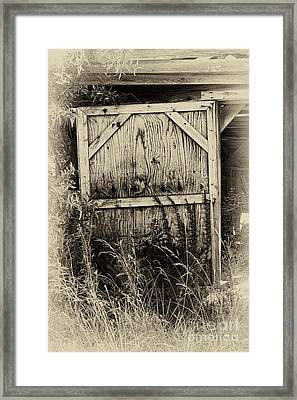 Old Shed Door Framed Print by Eva Thomas