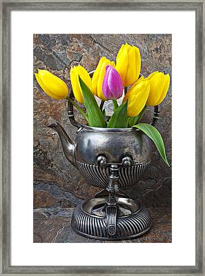 Old Tea Pot And Tulips Framed Print by Garry Gay