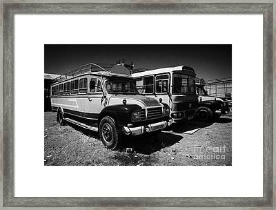 old traditional bedford bus coaches parked in Limassol lemesos republic of cyprus europe Framed Print