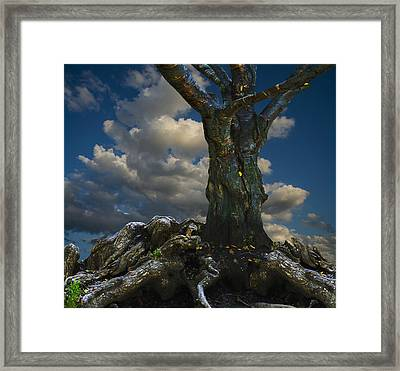 Old Tree Framed Print by Vladimir Kholostykh