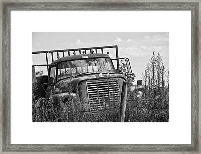 Old Truck In The Weeds Framed Print by Wilma  Birdwell