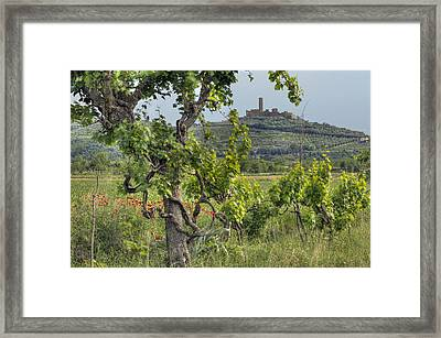 Tuscany Castle Framed Print by Al Hurley