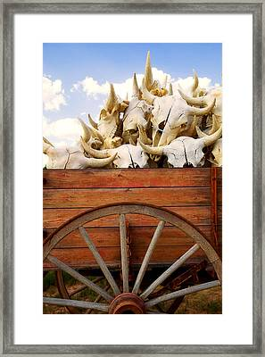 Old Wagon Full Of Buffalo Skulls Framed Print by Garry Gay