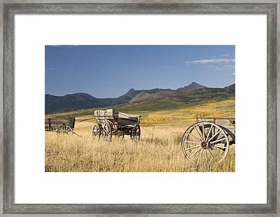 Old Wagons, Foothills, Alberta, Canada Framed Print
