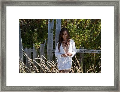 Old Weathered Fence Framed Print